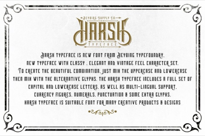 Creativemarket_Harsh_Typeface_Bonus_Intro_Sale_280584_cap03