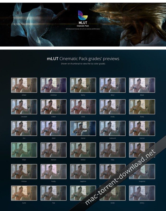 motionvfx_mlut_cinematic_pack_30_professional_cinematic_3d_luts_win_mac