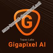 Topaz Gigapixel AI 4.0.3