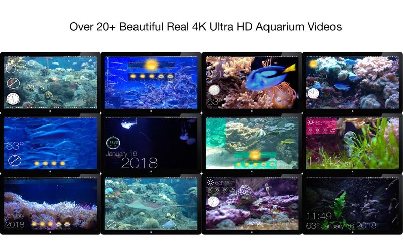 Aquarium 4K - Live Wallpaper 1.0.1 | Mac Torrents