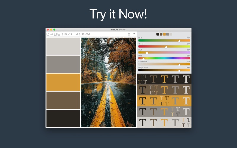 Color Palette from Image Screenshot 5
