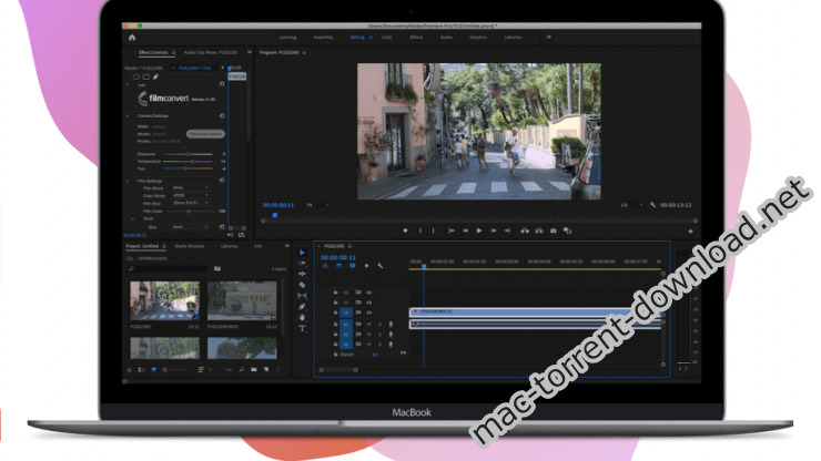 FilmConvert Nitrate 302 for After Effects and Premiere Pro Screenshot 02