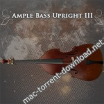Ample Sound Ample Bass Upright III v3.1.0