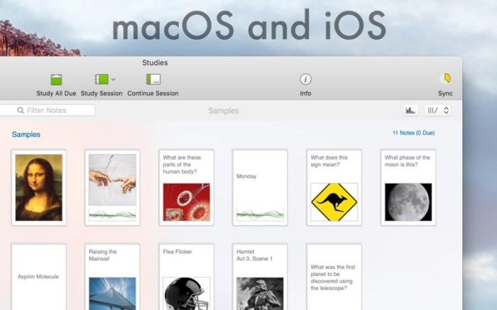 Studies Screenshot 02 1fiq5h0y