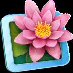 LilyView 1.4.1