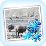 JixiPix Snow Daze