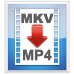 Mkv2mp4 icon