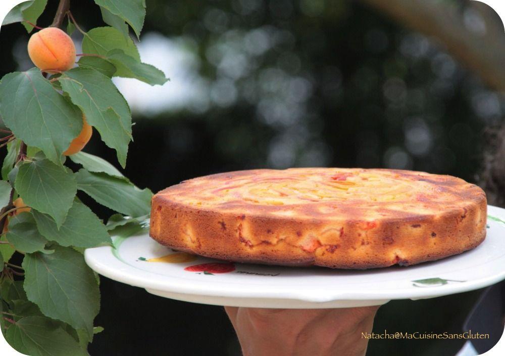 gateau-abricots-sans-gluten