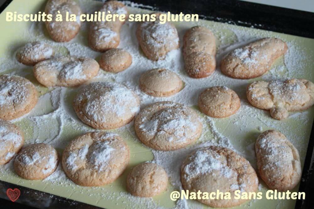 Biscuits-Cuillere-02