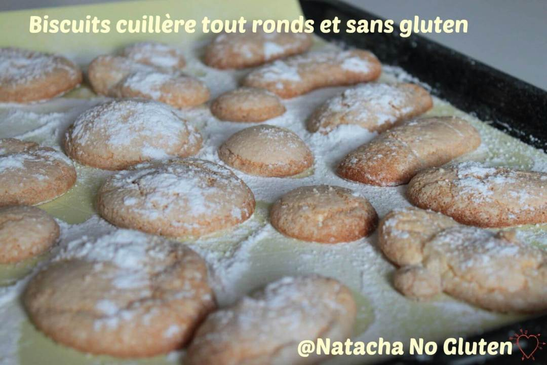 Biscuits-Cuillere-03