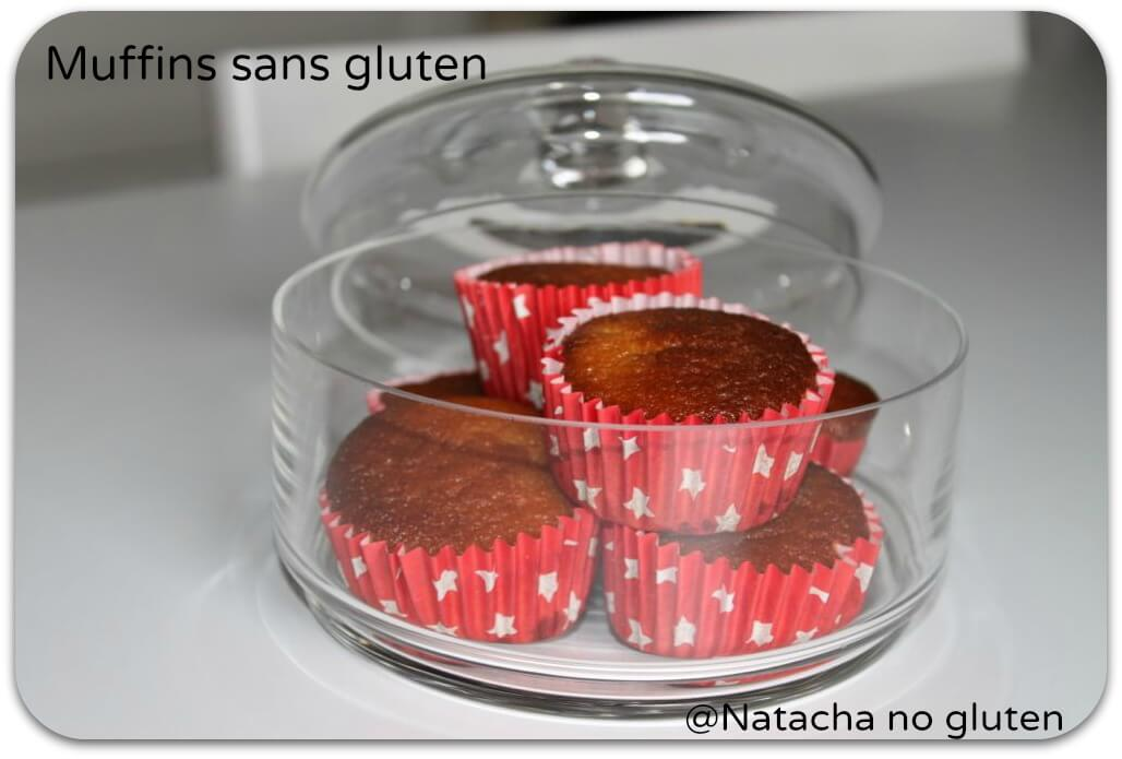 Muffins-pepites-sans-gluten