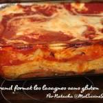 lasagnes-ratatouille-grand-format