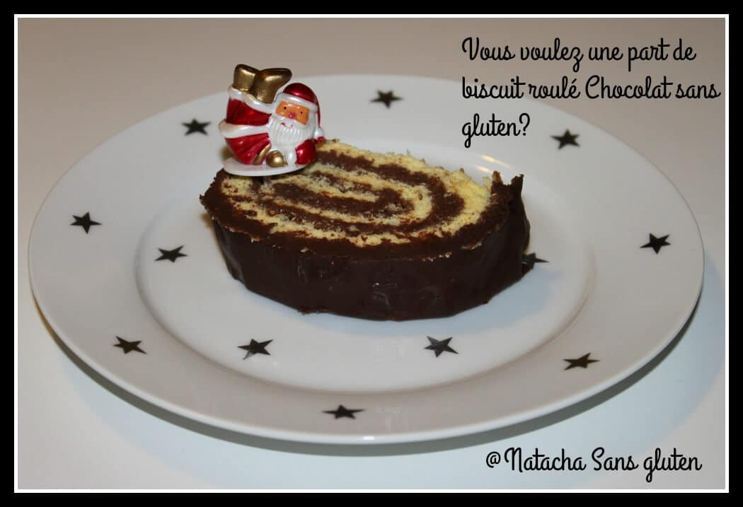 part-gateau-roule-chocolat-sans-gluten