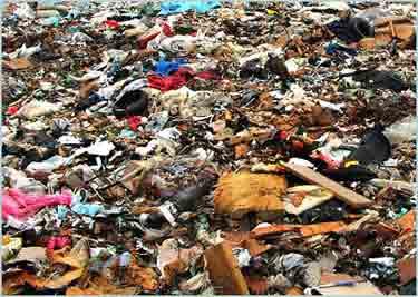 survival-landfill-132