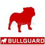 BullGuard Antivirus 2020 20.0.383.2 Crack Full Keygen Free Download