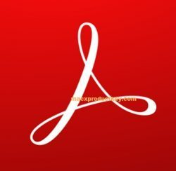 Adobe Acrobat Reader DC 2020.013.20074 Crack Free Download {Latest}