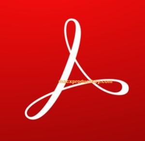 Adobe Acrobat Reader 19.5 Crack + License Key Free Download 2019