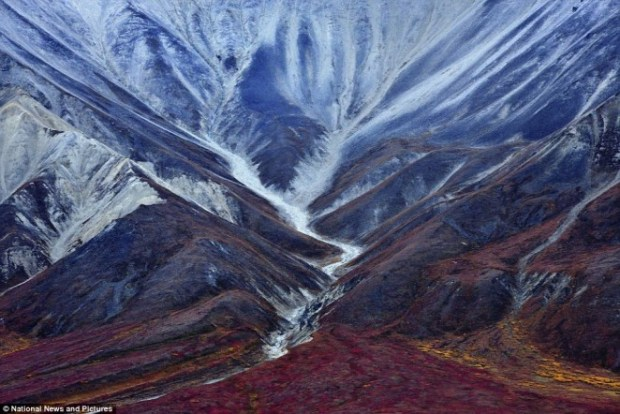 23e82a2900000578-2867150-the_trace_of_an_ancient_glacier_denali_park_alaska_photographer_-a-8_1418141805188