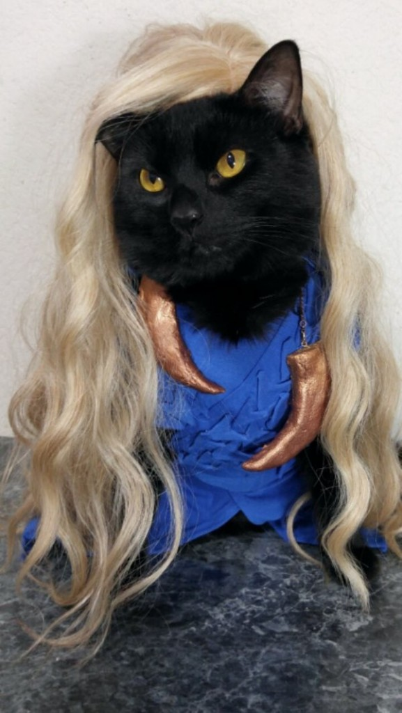 cat-cosplay-blog-3