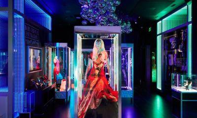 """Haus Of Gaga"" και το φόρεμα από ωμό κρέας"