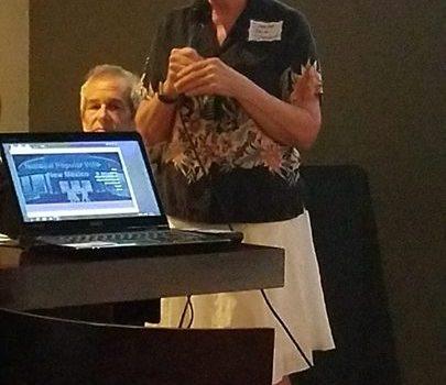 Senator Mimi Stewart speaking at the National …
