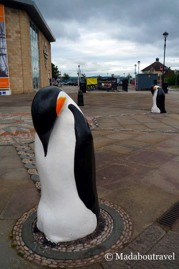 Pingüinos en el exterior del RRS Discovery