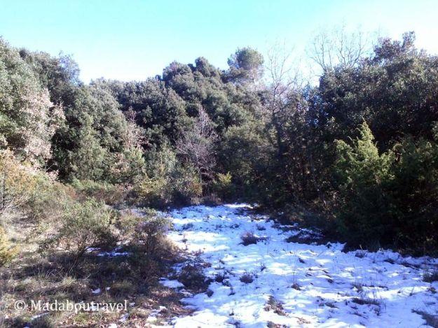 Nieve en el Montseny