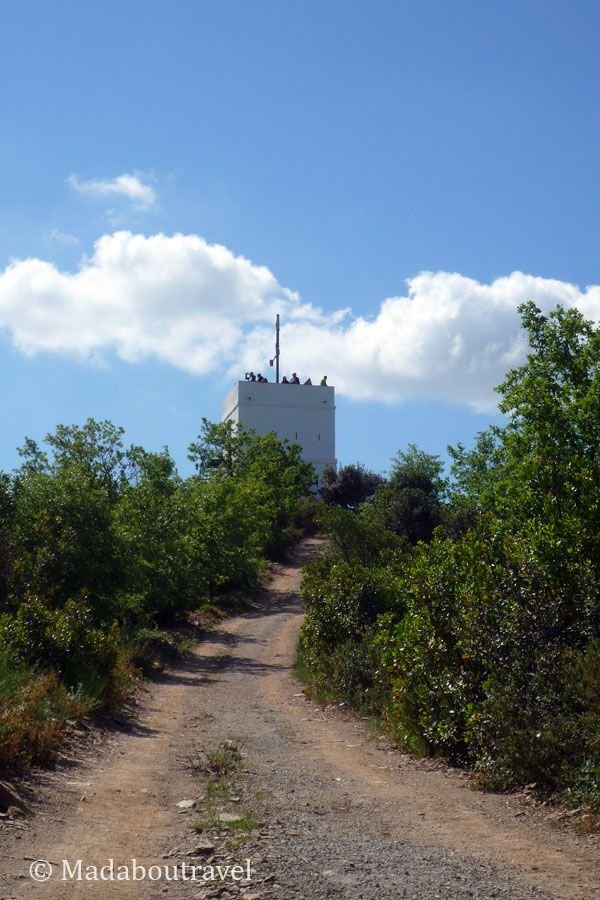 Camino a la Torre del Telégrafo de Montornès