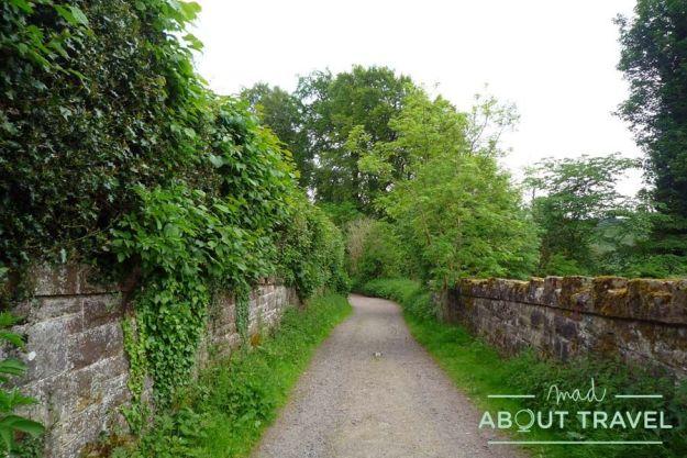 Camino al Roslin Glen