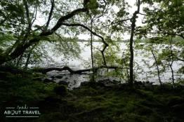 Un paseo por la isla de Inchmahome, en el Lago de Menteith