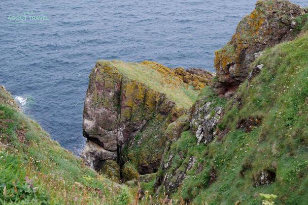 senderismo en la reserva natural de st abbs en los borders de escocia