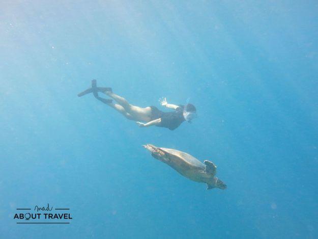 esnórquel en el resort coco bodu hithi de maldivas