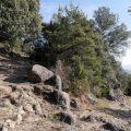via-romana-del-capsacosta
