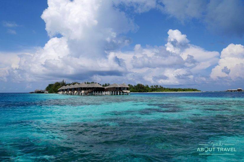 que hacer en maldivas snorkel coco bodu hithi