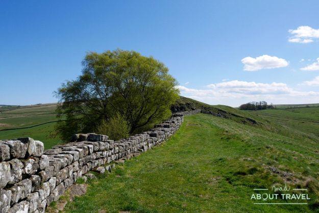 muro de adriano: northumberland