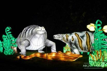 giant-lanterns-edinburgh-zoo-10