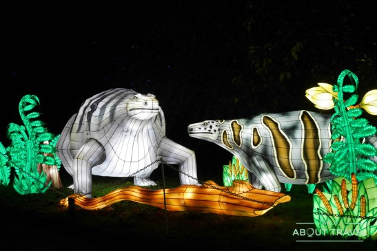 giant-lanterns-edinburgh-zoo-10