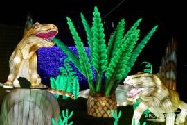 giant-lanterns-edinburgh-zoo-11