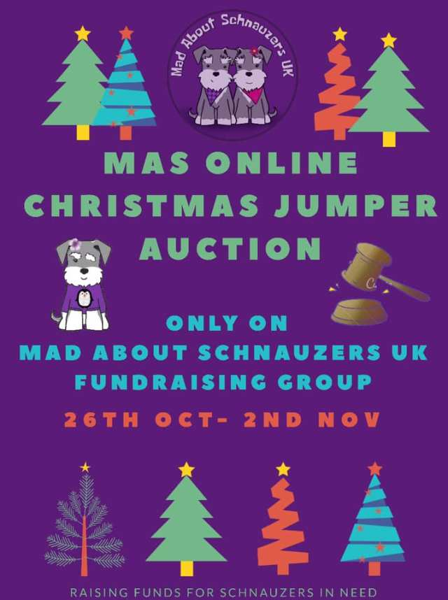 MAS Christmas Jumper Auction