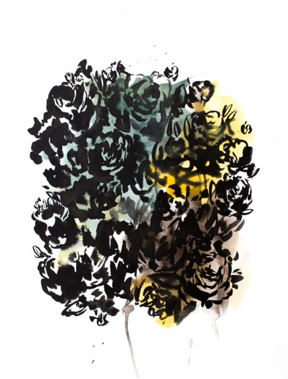 Botanical Shadow 2, 24 x 18 inches, acrylic ink on paper, 2016