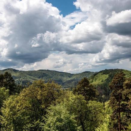 Alsace, Massif de Vosges du Nord