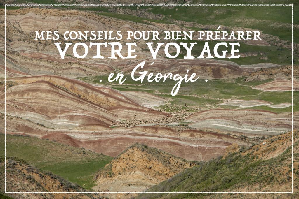 Mes conseils pour bien préparer votre voyage en georgie