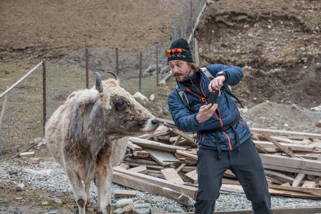 Jonathan adore prendre des selfies avec les vaches géorgiennes qui se baladent dans les rues, géorgie