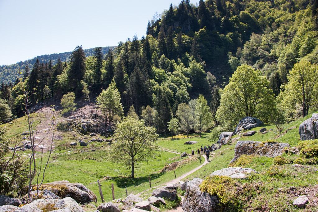 Marion-Prigent-Blog-Madame-Voyage-France-Alsace-Randonnee-Sentiers-des-roches-12