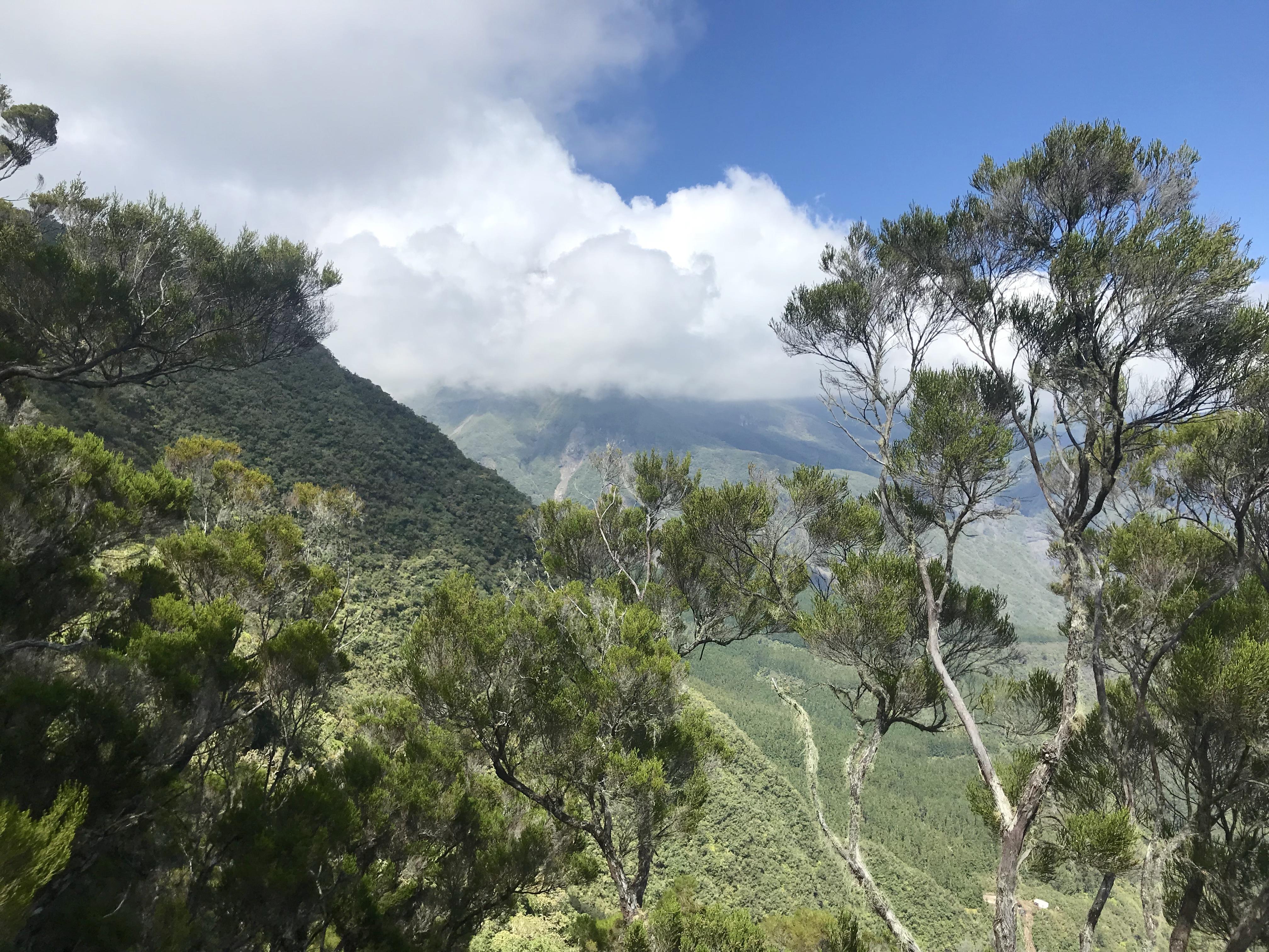 Trek à la réunion - blog Madame Voyage