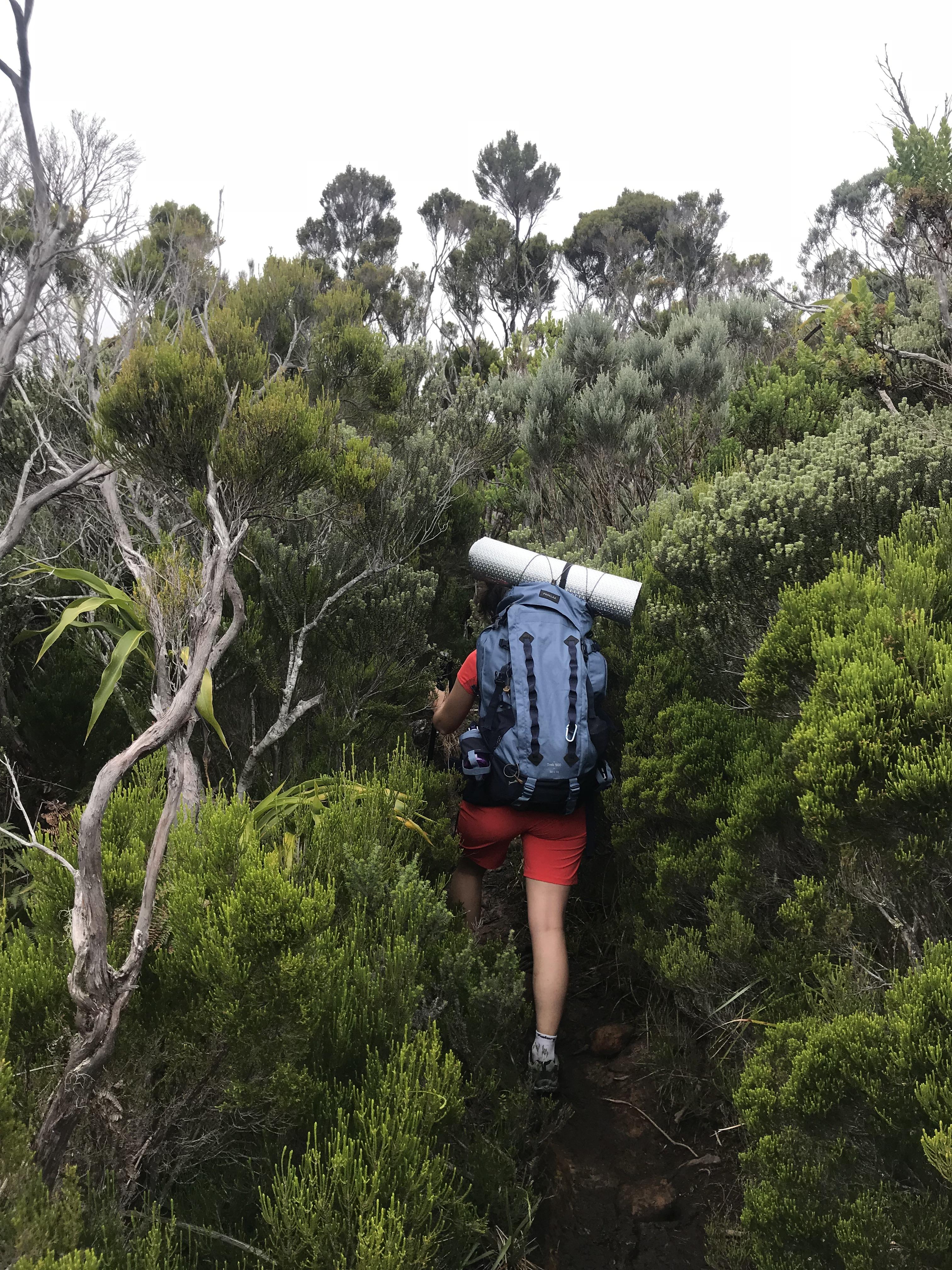 Moi en plein effort, trek à La Réunion GR R1