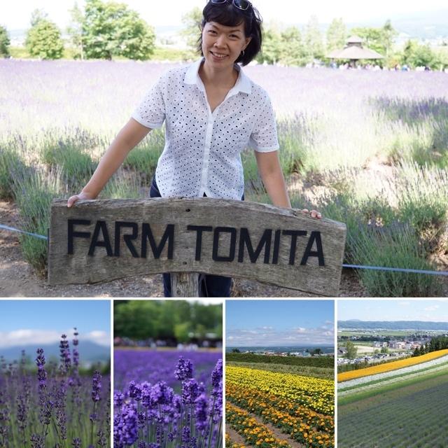 Ga cuma lavender yang ada dimari, beberapa bunga juga. Tapi yang paling bagus itu Lavender dan Sun Flowernya