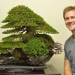 盆栽は究極の芸術作品としてその美しさにハマる外国人が増えている
