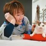 村山由佳戦友もみじNHKネコメンタリー猫も杓子もに登場!