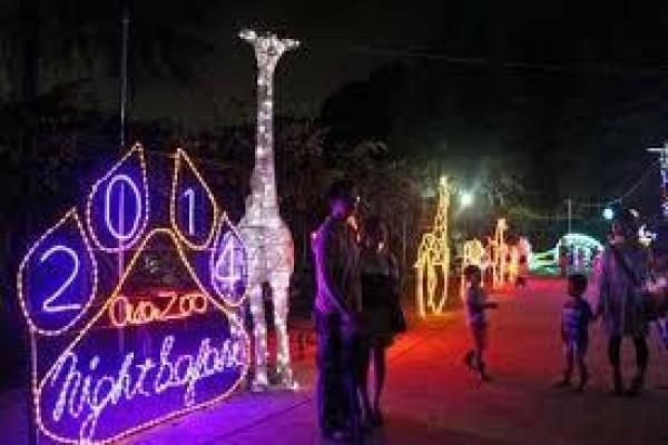 安佐動物園ナイトサファリ